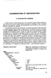 Classification des Insectes - site aberlentomo.fr