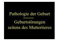 Pathologie der Geburt Geburtstörungen seitens des Muttertieres