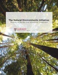 Paper-NaturalEnvironmentsInitiative_0