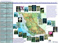 Snapshot of Alien Invasive Plants in Parks and Protected Areas ...