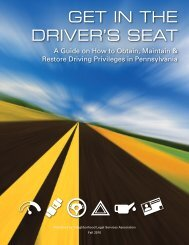 A Guide on How to Obtain, Maintain & Restore Driving Privileges in ...