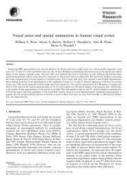 Visual areas and spatial summation in human visual cortex