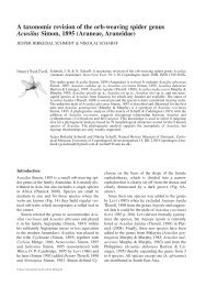 A taxonomic revision of the orb-weaving spider genus Acusilas ...
