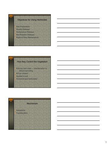 Notes - PDF
