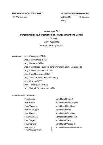 Protokoll 12. Sitzung vom 9. April 2013 (pdf, 72.6 KB)