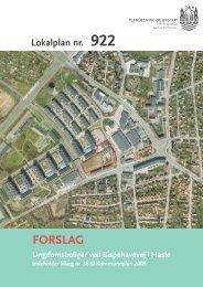 lokalplanens indhold - Velkommen til Århus Kommune