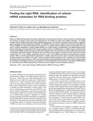 Identification of cellular mRNA substrates for RNA-binding proteins