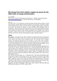 Bioenergy from short rotation copice as source for the ... - BIO-HEAT