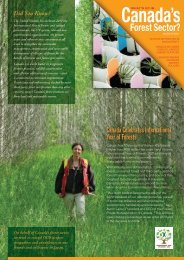 Canada Celebrates International Year of Forests - Feel Good