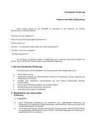 Individuelle Förderung Freiherr-vom-Stein-Gymnasium 1. Ziel der ...