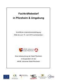 1-DI-O-100512-Fragebogen an Unternehmen aus Pforzheim und ...