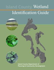 Wetlands ID Guide - Island County Government
