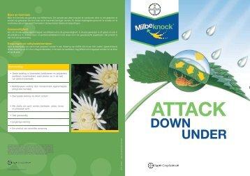 down under attack - Bayer CropScience