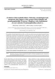 Evolution of discocephalid ciliates: Molecular, morphological and ...