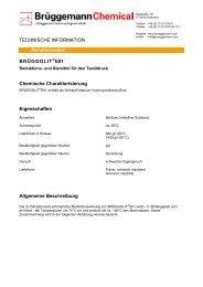 BRÜGGOLIT®E01 Chemische Charakterisierung Eigenschaften ...