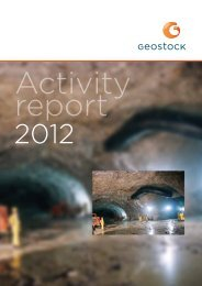 ACTIVITY REPORT 2012 - Geostock