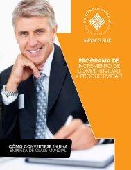 programa de incremento de competitividad y productividad