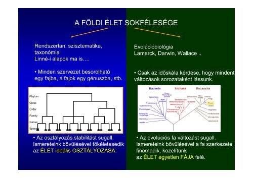 Az előadás diái letölthetők. - ELTE Növényrendszertani, Ökológiai ...