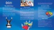 DDNi CES 2012 Brochure