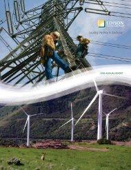 2008 Annual Report (PDF, 733KB) - Edison International