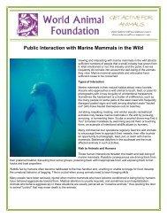 Public Interaction with Marine Mammals in the Wild - World Animal ...