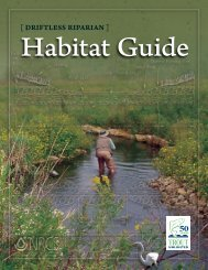 [ DRIFTLESS RIPARIAN ] - National Fish Habitat Partnership