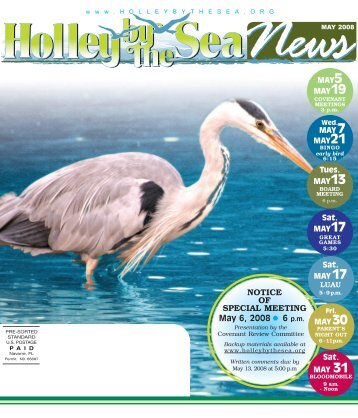 May 2008 Newsletter - Holley by the Sea