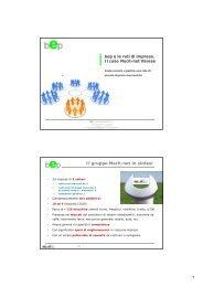1 Il gruppo Mech-net in sintesi - bep business e persone srl