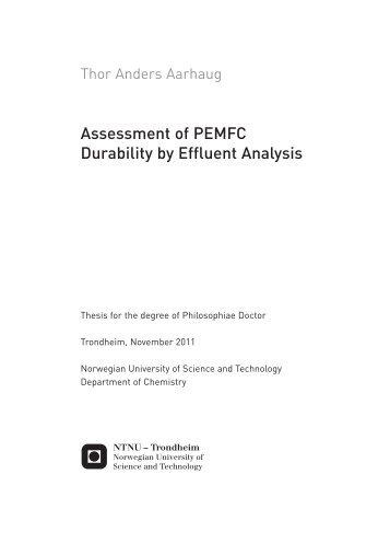 ntnu phd thesis latex template