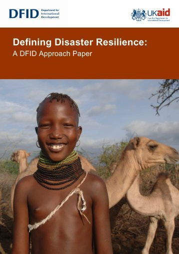 Defining Disaster Resilience A DFID Approach Paper - FSN Network ...