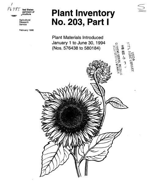 50-5014-NON-NON Forte Schrader Tube 24 x 1.5-2.0