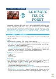 le risque feu de forêt - Préfecture