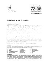 Detailinfos: Aktion 72 Stunden - Pfadi Yberg
