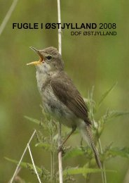 Fugle i Østjylland 2008 - 3. udgave - DOF Østjylland