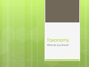 Taxonomy Review - ClassNet