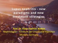 Lupus nephritis - Cardiovasculaire Geneeskunde