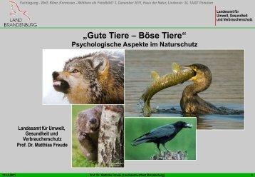 Gute Tiere – böse TiereVon unserem Umgang mit - Haus der Natur ...