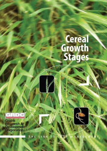 Cereal growth stages - Grains Research & Development Corporation