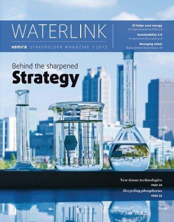 WaterLink 01/2013 - Kemira