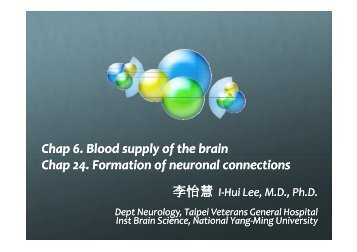 functional neuroanatomy blood supply and neuronal connection2.pdf