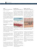 Projektbericht - Mappei - Seite 5