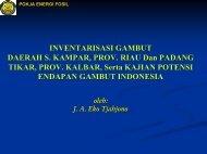 Inventarisasi Gambut Daerah S. Kampar, Provinsi Riau dan