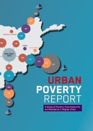 DRC PIN Urban Poverty Report