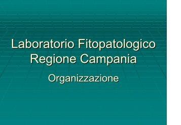 Scarica la presentazione - Regione Campania