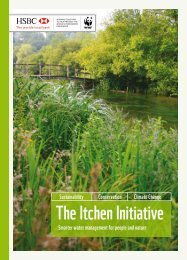 The Itchen Initiative - WWF UK
