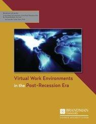 Virtual Work Environments in the Post-Recession Era - Brandman ...