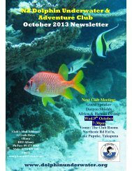 NZ Dolphin Underwater & Adventure Club October 2013 Newsletter