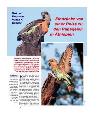 Eindrücke von einer Reise zu den Papageien in Äthiopien