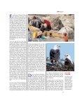 Eindrücke von einer Reise zu den Papageien in Äthiopien - Page 2