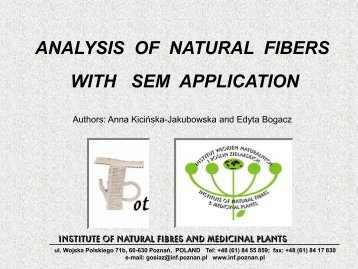 analysis of natural fibers with sem application - Project T-Pot